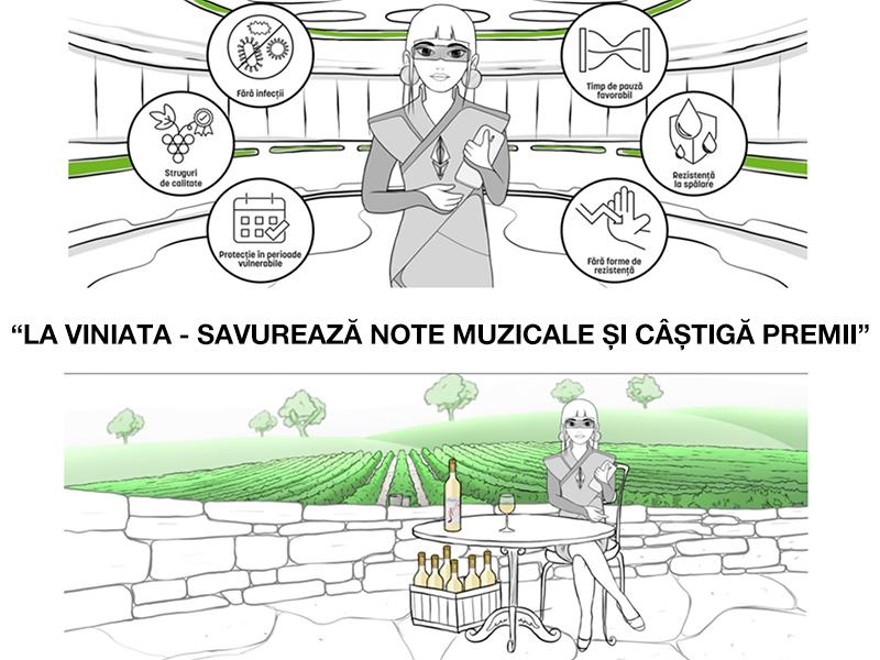 Povești cu vinuri românești